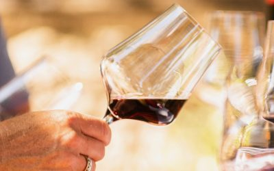 How To Taste Wine Like a Pro- a 5-Step Crush Course Guide